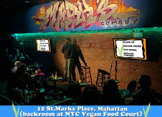 St. Marks Comedy Club in the East Village